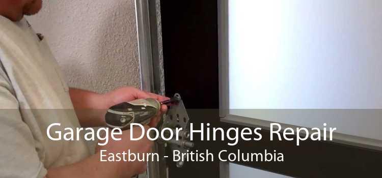 Garage Door Hinges Repair Eastburn - British Columbia
