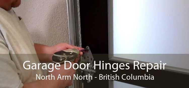 Garage Door Hinges Repair North Arm North - British Columbia
