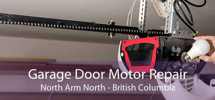 Garage Door Motor Repair North Arm North - British Columbia