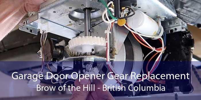 Garage Door Opener Gear Replacement Brow of the Hill - British Columbia
