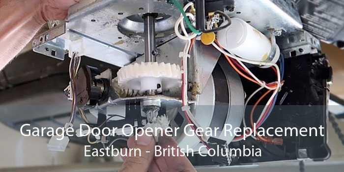 Garage Door Opener Gear Replacement Eastburn - British Columbia