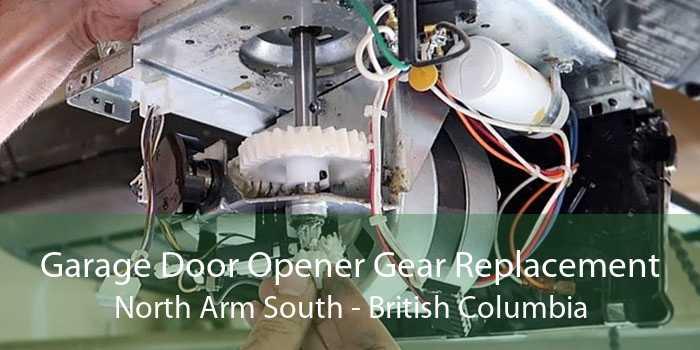Garage Door Opener Gear Replacement North Arm South - British Columbia