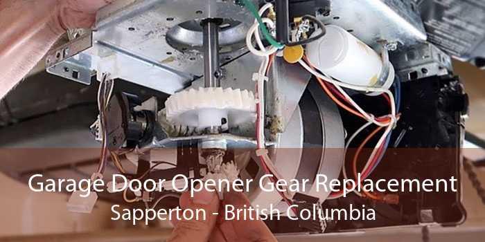 Garage Door Opener Gear Replacement Sapperton - British Columbia