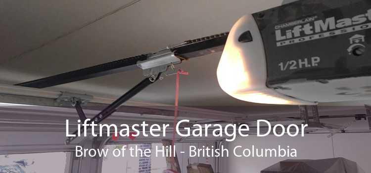 Liftmaster Garage Door Brow of the Hill - British Columbia