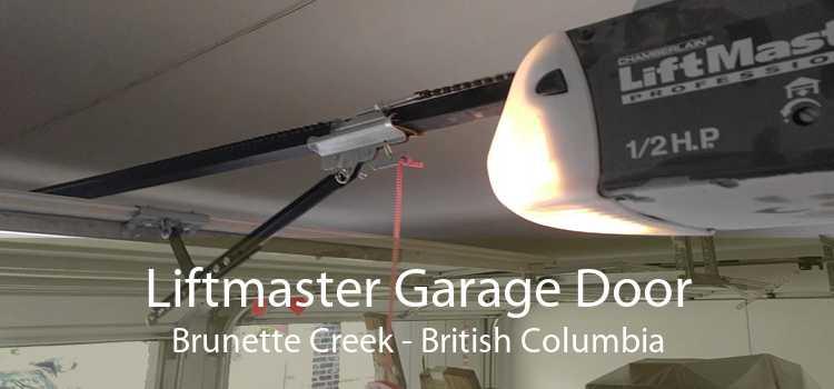 Liftmaster Garage Door Brunette Creek - British Columbia