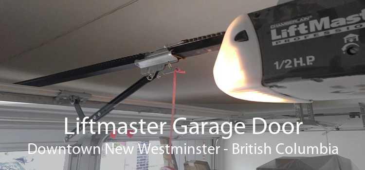 Liftmaster Garage Door Downtown New Westminster - British Columbia