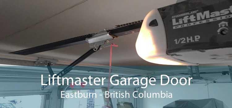 Liftmaster Garage Door Eastburn - British Columbia